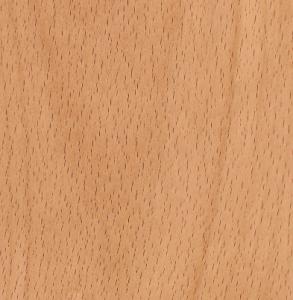 beech-wood-light-wood
